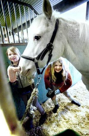 GLADA. Emma Florén Wikström och Matilda Gustavsson har tagit chansen att vara med på Storks Hyra häst-dag i Kungsgården. Här tar de hand om Emmas ponny Idomin.