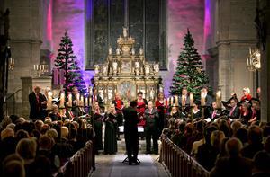Örebro kammarkör har en påställd helg. Tre konserter hålls i S:t Nicolai kyrka. Denna bild är från en tidigare julkonsert. Arkivbild.