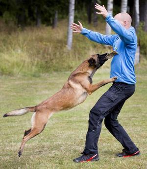 Erik Wiklund busar lite med sin hund under träningspassen.