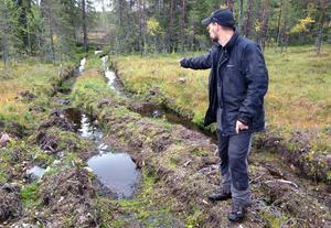 Daniel Palm visar vad som hänt under en skogsavverkning.