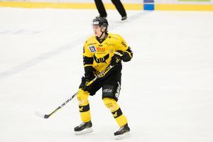 Hercules Öhlander Horn fick  dryga 13 minuters istid hemma mot Vita Hästen, i den blott andra matchen han fått istid i Hockeyallsvenskan.
