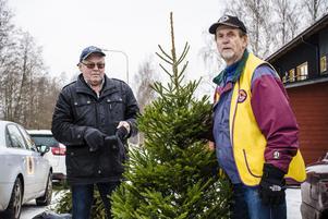 Kenneth Lindgren(vänster) och Assar Molander(höger) samlade under tisdagsförmiddagen in ett helt släp fyllt med granar i enbart Färjegårdarna och en bit av Årby.