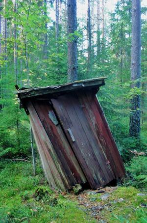 Fallfärdigt utedass vid en gammal kolarkoja i skogen.