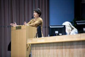 Oppositionsrådet Birgitta Sacrédeus är för storregioner, men önskar att ordet ting blir kvar.
