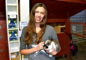 Alice Gundhe har följt upp sin kaninbok med en bok om hur man aktiverar hundar.
