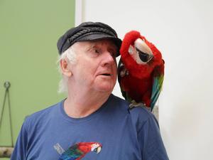 Jan-Åke Svedberg föder upp världens största papegojor. Här sitter hans Grönvingade ara Filippa på hans axel.