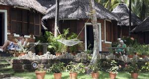 Bo på ayurvedisk resort i Indien. Tyst och lugnt i egen bungalow.