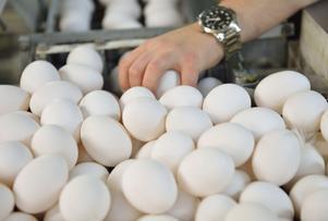 Svenska ägg.