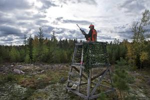 Personen och jakttornet på bilden har inget med händelsen i Söråker att göra.
