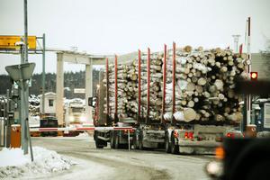 Brist på gran till sågverken befaras till sommaren.