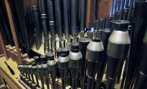 Instrumentets inre är en skog av pipor i varierande storlekar