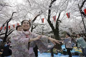 Dansare i Ueno parken i Tokyo firar våren.