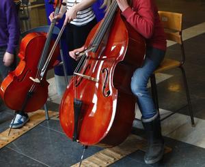 I Ludvika kostar det numera bara 100 kronor att lära sig spela ett instrument. Vänsterpartiet tycker att det ska vara helt gratis för barnen i Säter.