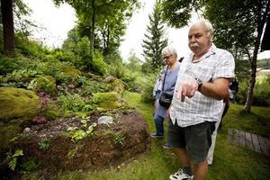 Sören Joelsson har aldrig haft någon ritning över hur trädgården ska se ut.