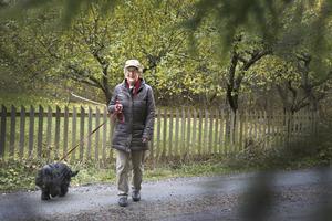 Birgitta Andersson var på promenad med cockerspanieln Kalle när de överraskades av en älgko med två kalvar som stod i en trädgård och åt äpplen. –Plötsligt flög älgen över staketet och stångade mig rätt i huvudet så att jag föll i diket. Sen såg det ut som att hon tänkte slutföra attacken men så sprang hon efter sina kalvar. Jag är så tacksam för att det inte blev värre, säger Birgitta.