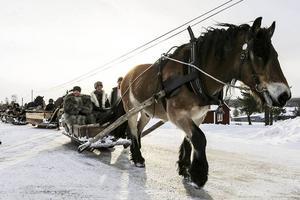 7 februari 2015. För första gången i modern tid tog forkörarna från Dalarna vägen genom Lillhärdal. Ett mycket uppskattat besök av både forbönder och bofasta, som välkomnade hästekipagen när de gled in i byn.