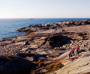 Klippor på Nordkoster.Foto: Strömstad Tourist