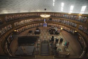 Bibliotek är en utmärkt plats för den som vill bilda sig.