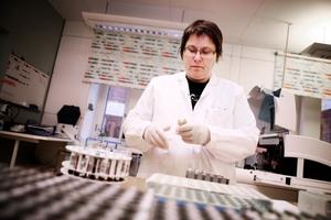 Inom kort börjar kemlab på Gävle sjukhus med en ny och träffsäkrare metod att mäta blodfetter. Eva-Lena Karlsson, biomedicinsk analytiker, är en av dem som sköter mätningarna.