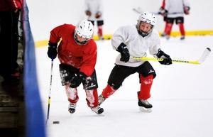 Järnas unga ishockeyspelare riskerar att förlora mycket istid kommande vinter.