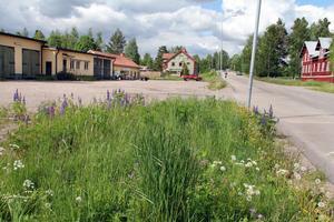 Centerpartiet i Ovanåkers kommun anser att området väster om gamla Faluvägen är lämpligt för bostäder.