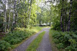 Många var det som fick gå sitt öde till mötes vid Bålbacken på Skönsmon. Få är det som känner till att det var här den låg, intill ett populärt promenadstråk.