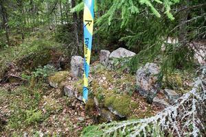 Femstenarör märkte ut gränsen mellan Rogsta och Harmångers socknar, och finns ännu kvar vid Stigsängarna.