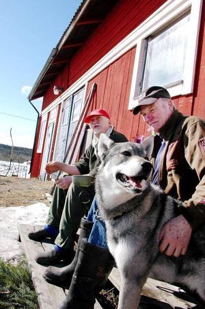 Bo Torstemo och Verner Mårtensson i Salsån tillhör ett av jaktlagen som inte har några jaktmarker i årets älgjakt. På bilden också jaktkompisen Ruff.