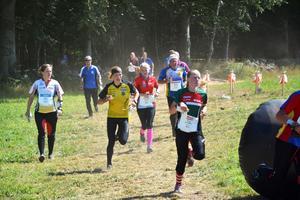 Det lär bli fullt fart i skogarna kring Backsjö, Domsjö och Skyttis vecka 30 i sommar.  Bilden är från O-ringen i Arvika i somras.