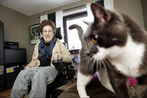 Katten Elis är döpt efter Cornelis. Tidigare hade Stina en katt som hette Assar efter hennes andra stora förebild Astrid Lindgren.
