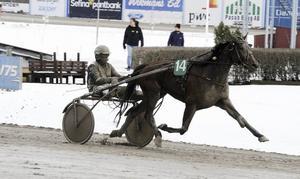 Mr Miles med Fredrik Pedersen travar på mot segern i fjärde V4-avdelningen.