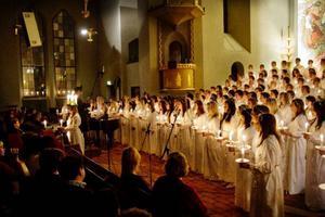 Inte mindre än 127 sångare ingick i Palmcrantzskolans musikesteters stora luciakör.  Foto: Ulrika Andersson