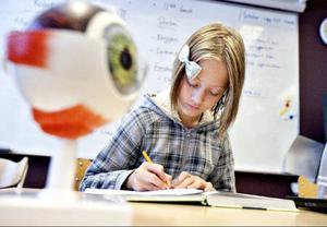Alma Hansen har valt forskardelen i projektarbetet. Hon forskar om ögat, dess uppbyggnad, sjukdomar och hur de skulle kunna botas.