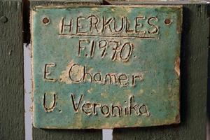 Skylt med ett hästnamn sitter kvar på det som tidigare var en hästbox.