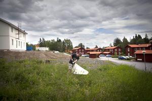 Lars-Olof Grund går runt med håven för att försöka fånga någon bladbagge.