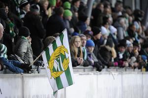 Tvåa i publikligan i elitserien i fjol, men Hammarby vill se mer folk på Zinken i vinter.