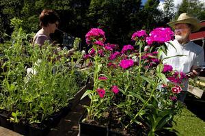 Premiär för mässa. Omkring 1 500 personer besökte trädgårdsmässan den första dagen. Några hade åkt ända från Umeå och Skåne visade det sig när arrangörerna gick runt och intervjuade besökare.