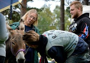 Rickard Pettersson från Timrå spanade inte bara in hästkrafter, utan också åsnekraft.