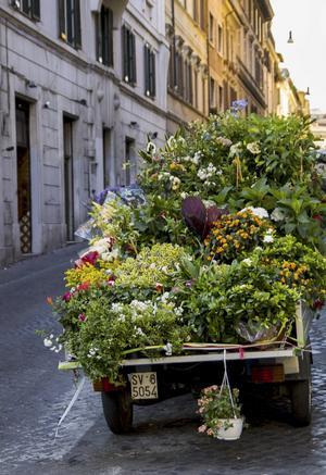 Den grönklädda lilla bilen står ofta i hörnet av Via del Boschetto och Via Panisperna.