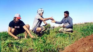 En av flera människor som Jonathan och Mikael träffade under resan var den här egyptiska bonden. De hjälpte honom att skörda gräs. PRIVATBILD