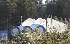 De väldiga vindkraftvingarna har placerats på en lämplig plats, utifall tillstånd till vindkraftbygge skulle ges. Foto: Curt Kvicker