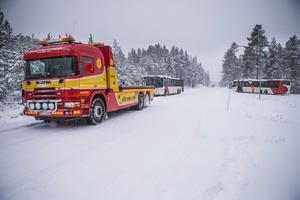 På Skogvägen vid Bergvik körde en busschaufför frivilligt ner i diket.