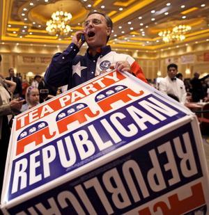 Entusiaster. Den så kallade Tea party-rörelsen livade upp det republikanska partiet, men några av dess kandiater skrämde bort väljare.