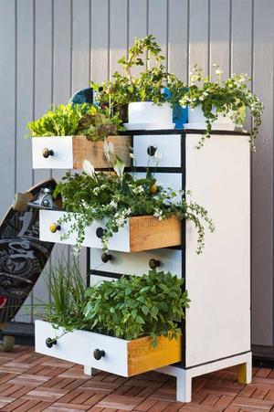 Med fantasi kan vad som helst hända! Byrån, som står på en trätrall av klickplattor, hjälper de mindre växterna upp på höjden.