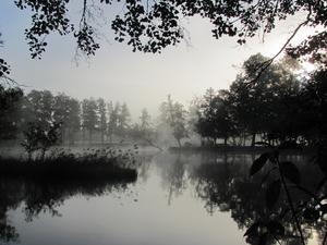 Morgondimma vid Kolbäcksån