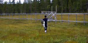 Jörgen Söderholm skidar på mot Mångsbodarna. Om han hinner slå den gamla tiden kan alla som är intresserade bevittna i Mora under lördagen. Foto:Kenny Ericsson Tällberg