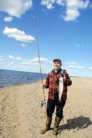 Foto: OLLE HILDINGSON Största fisken. Göran Hemlin drog upp en fin öring på 1,5 kilo från stranden. Han fick också en öring som inte var mer än dubbelt så stor som draget. Och förlorade fem drag som fastnade mellan stenar.