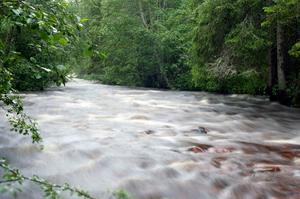 På väg till en fisketur i norra dalarna tog denna bild. Ett överfullt litet vattendrag efter allt regnande en sen julikväll