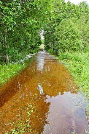Översvämning i Björken utanför Leksand