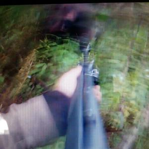 Rasmus Boström hade en filmkamera i gång under jakten. Bilden här är ett klipp från denna film och visar hur nära björnen var honom.